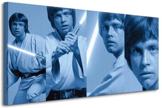 Vászonkép Star Wars (Luke Skywalker Pose) 100x50cm WDC93060