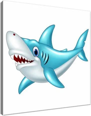 Vászonkép Kék cápa 30x30cm 2917A_1AI
