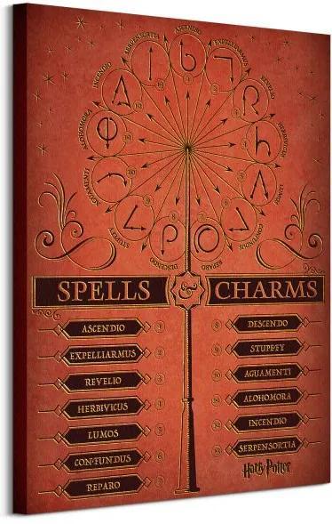 Vászonkép Harry Potter (Spells and Charms) 60x80cm WDC99982