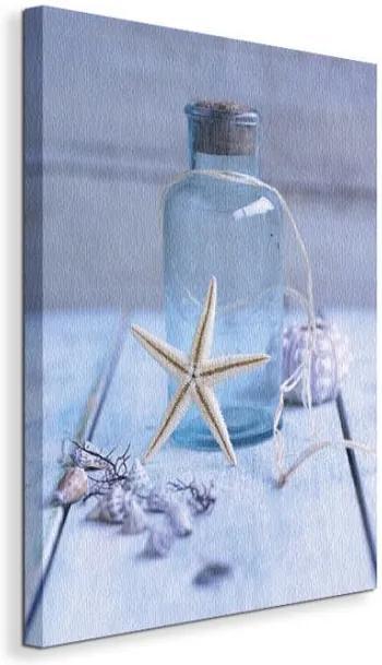 Vászonkép Tengericsillag a palacknál Shooter Howard 40x50cm WDC23140