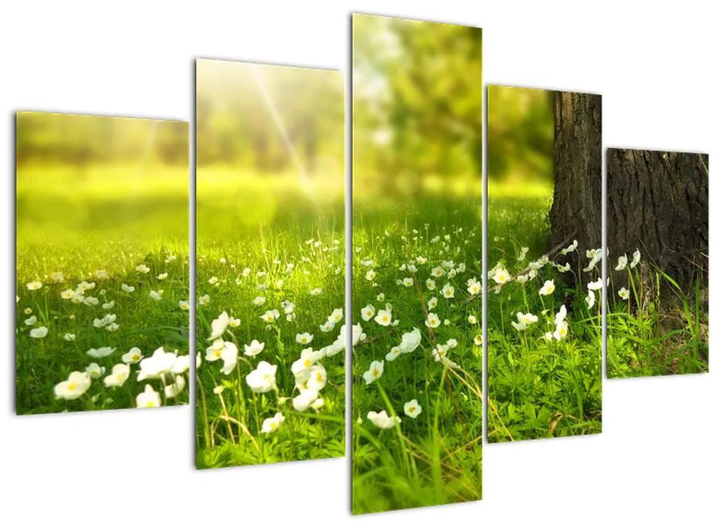 Tisztás és a virágok képe (150x105 cm)