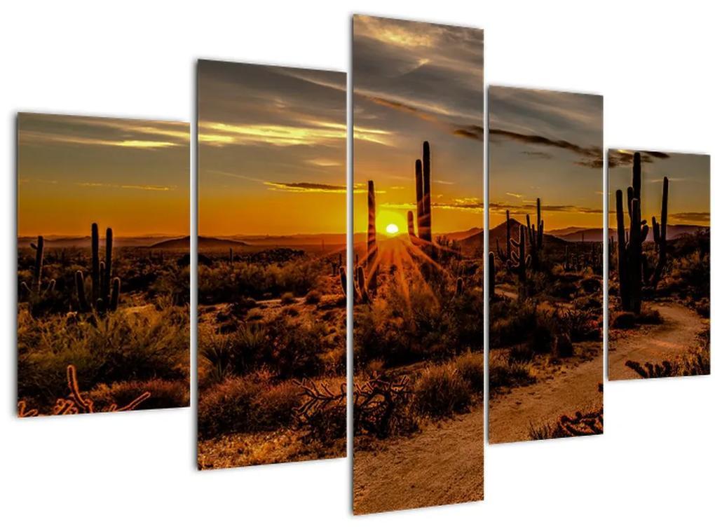 Kép - A nap vége az arizonai sivatagban (150x105 cm)