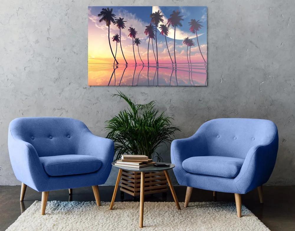 Kép naplemente a trópusi pámafák felett