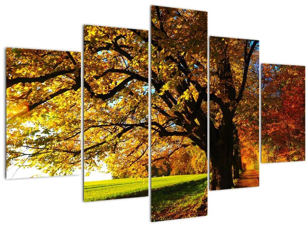 Az őszi kép (150x105 cm)