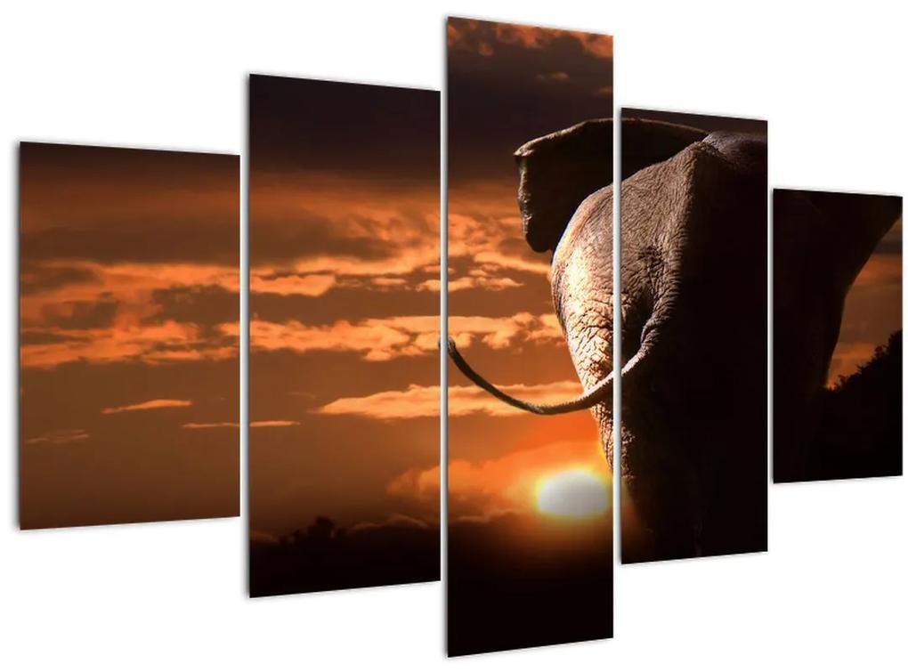 Elefánt képe (150x105 cm)