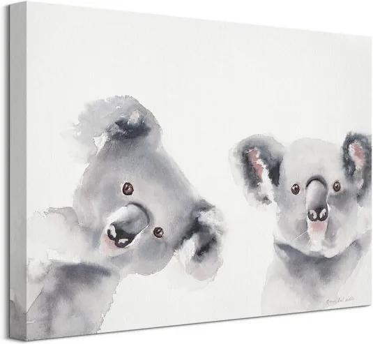 Vászonkép Kis koalák Del Valle Aimee 40x30cm WDC12019