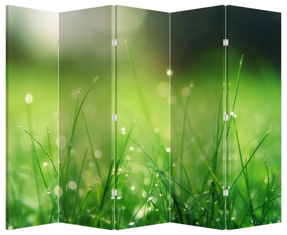 Paraván - Harmatos fű (225x180 cm)