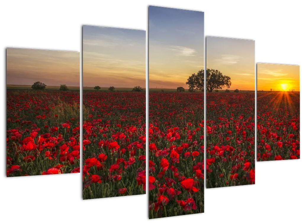 Pipacsos rét képe (150x105 cm)