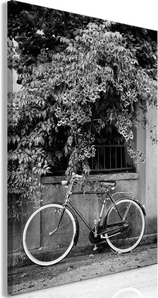 Kép - Bicycle and Flowers (1 Part) Vertical