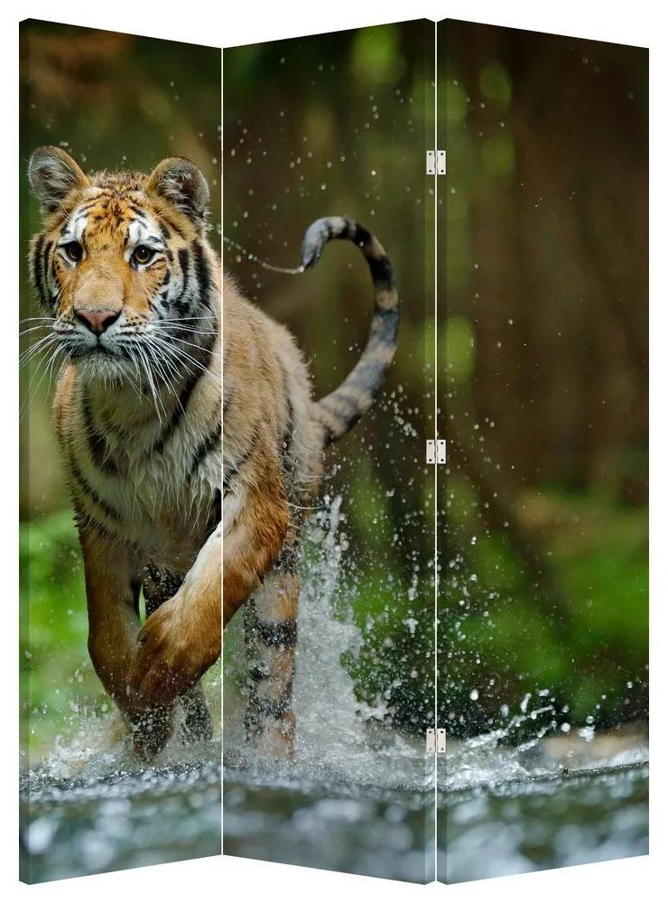 Paraván - Futó tigris (135x180 cm)