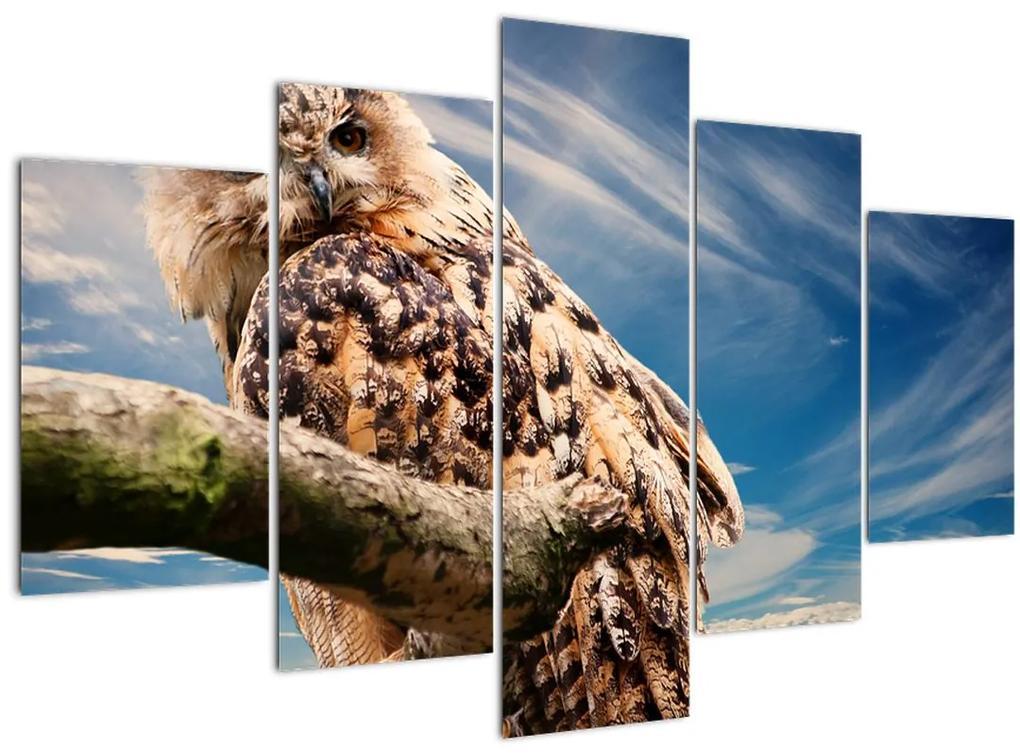 Bagoly képe (150x105 cm)