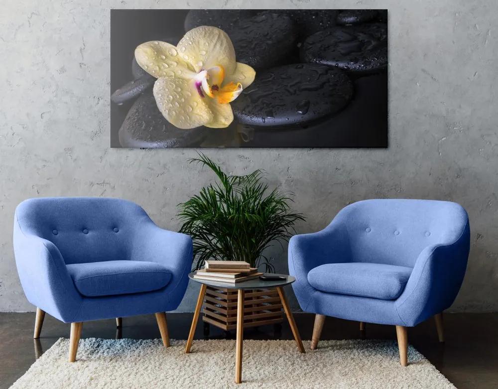 Kép Zen kövek sárga orchideával