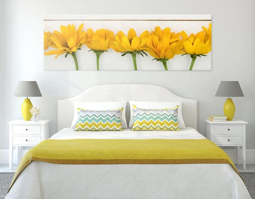 Kép gyönyörű sárga virágok