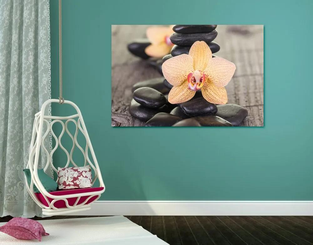 Kép sárga orchidea és Zen kövek