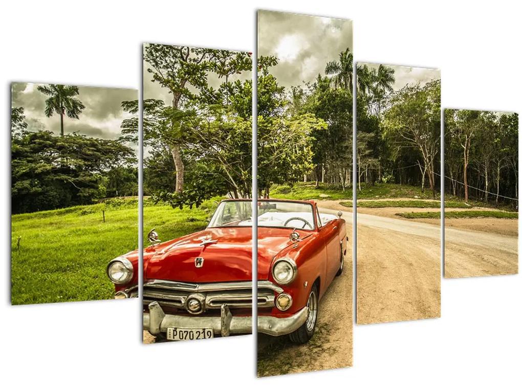 Kép - autó, veterán a természetben (150x105 cm)