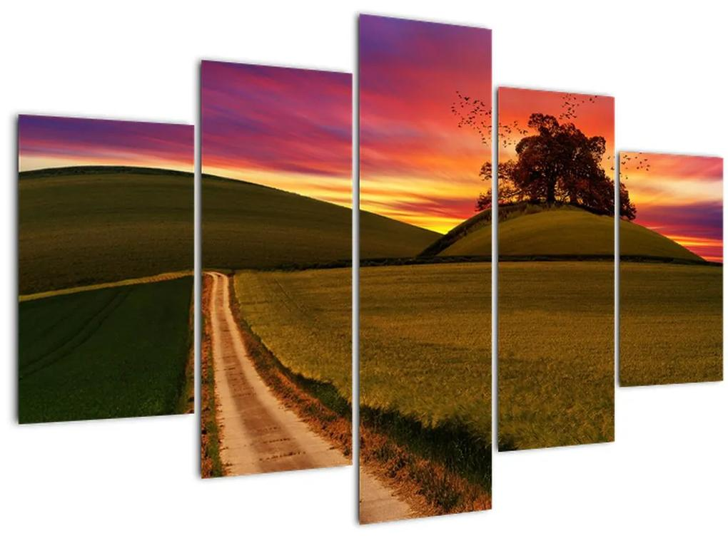 Mezei naplemente képe (150x105 cm)