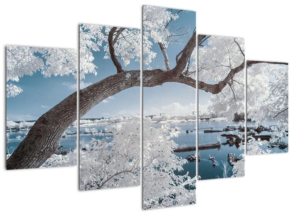 A víz mellett egy havas fa képe (150x105 cm)