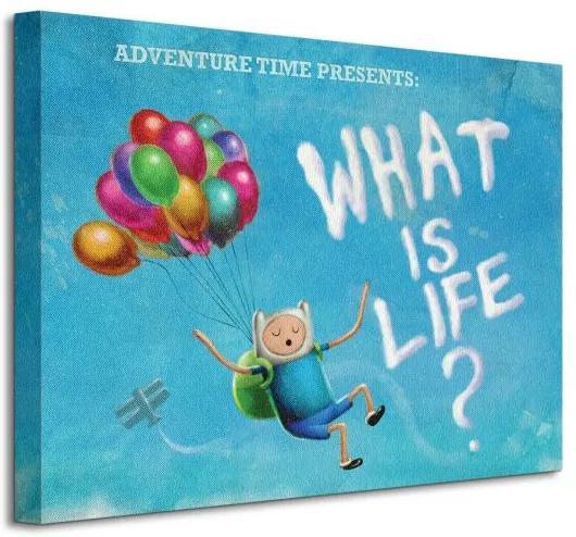 Vászonkép Cartoon Network Adventure Time - What is life? 40x30cm WDC92128