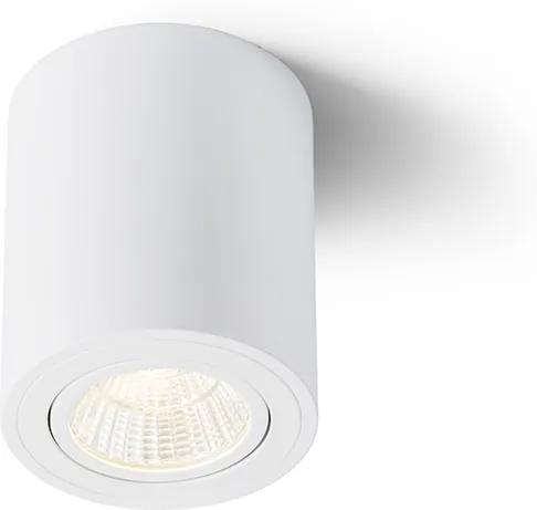 RENDL R10375 MAYO LED felületre szerelhető lámpatest, downlight fehér