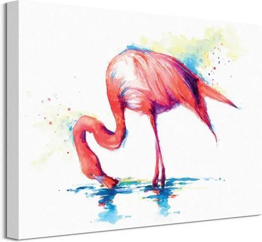 Vászonkép Flamingó vadászat Stokes Sarah 40x30cm WDC92600