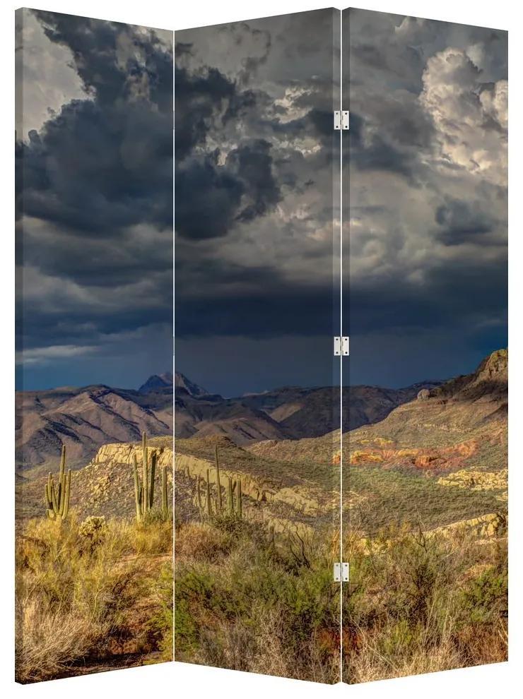 Paraván -  kaktuszok a természetben (135x180 cm)
