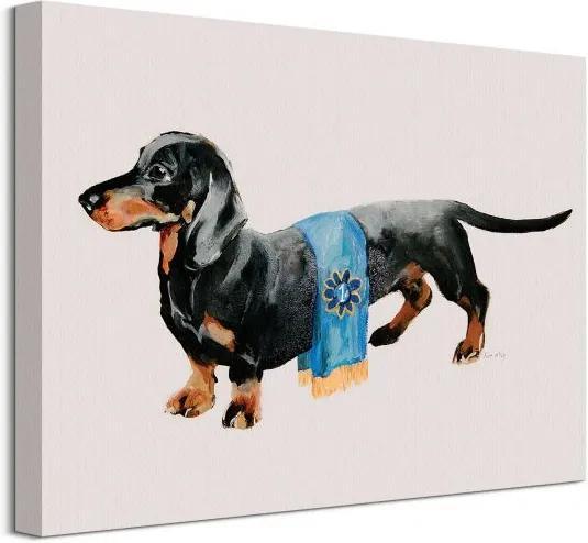 Vászonkép Tacskó kutya győzelemmel Mcgovern Kathryn 40x30cm WDC92986
