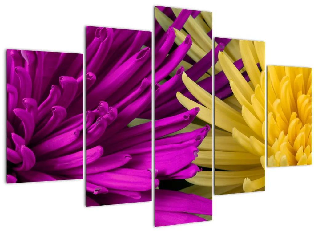 Kép - virág részlet (150x105 cm)