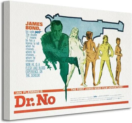 Vászonkép James Bond (Dr No - Gun) 40x30cm WDC92008
