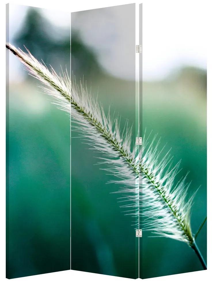 Paraván - Fűszál (135x180 cm)
