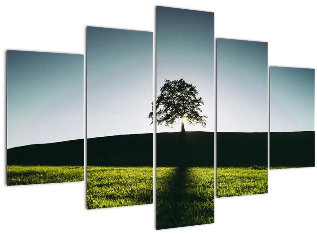 Természet kép - fa (150x105 cm)