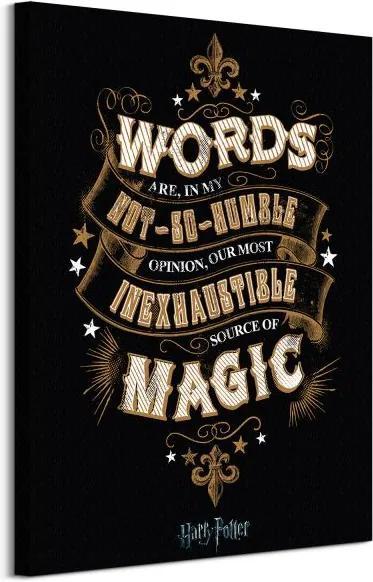 Vászonkép Harry Potter Words 60x80cm WDC99903
