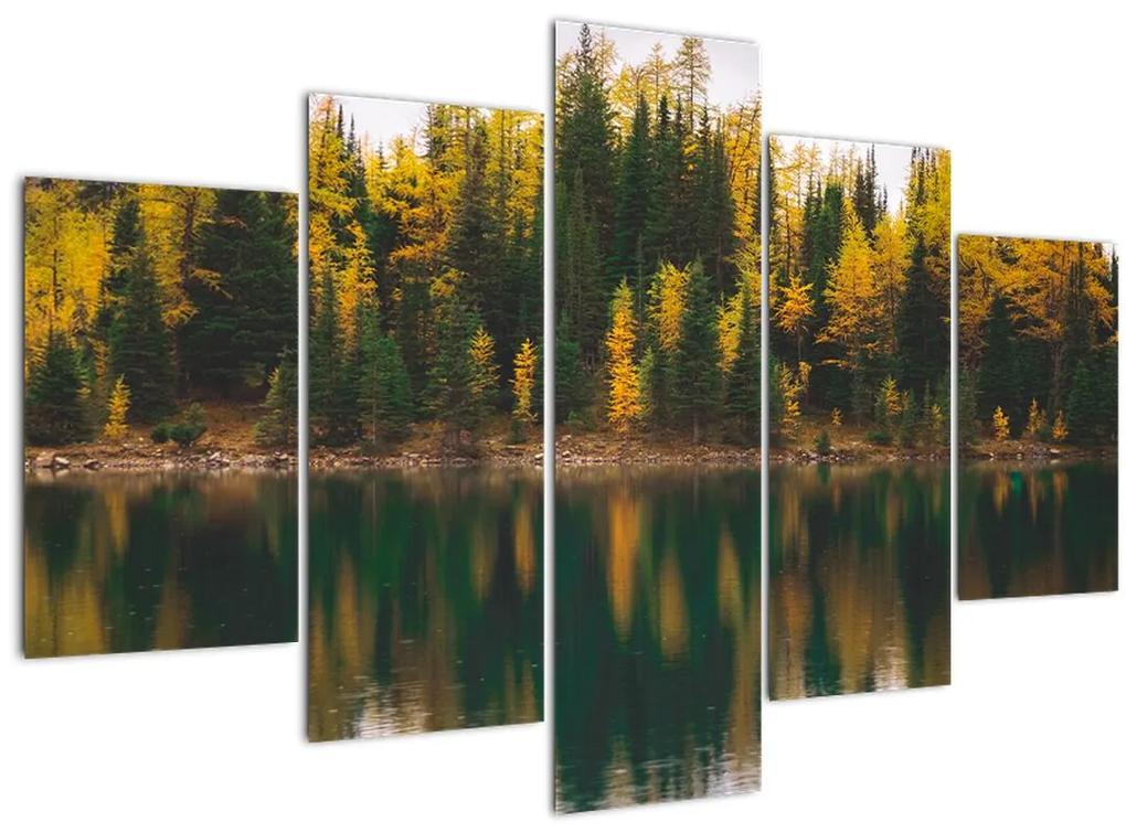 Erdei tó képe (150x105 cm)