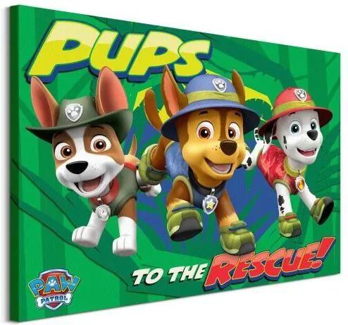 Vászonkép Paw Patrol (Pups To The Rescue) 80x60cm WDC100165