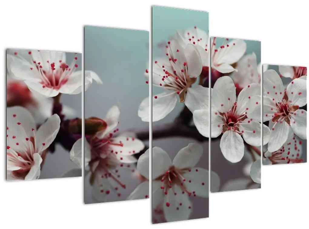 Virágos kép - piros (150x105 cm)