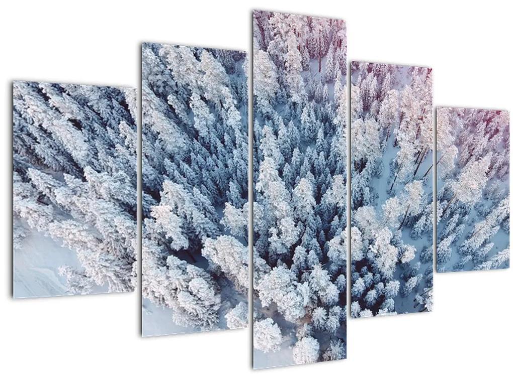 Havas fák képe (150x105 cm)