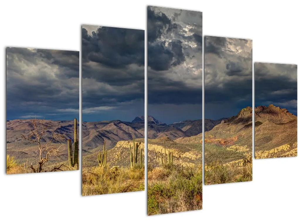 Kép - kaktuszok a természetben (150x105 cm)