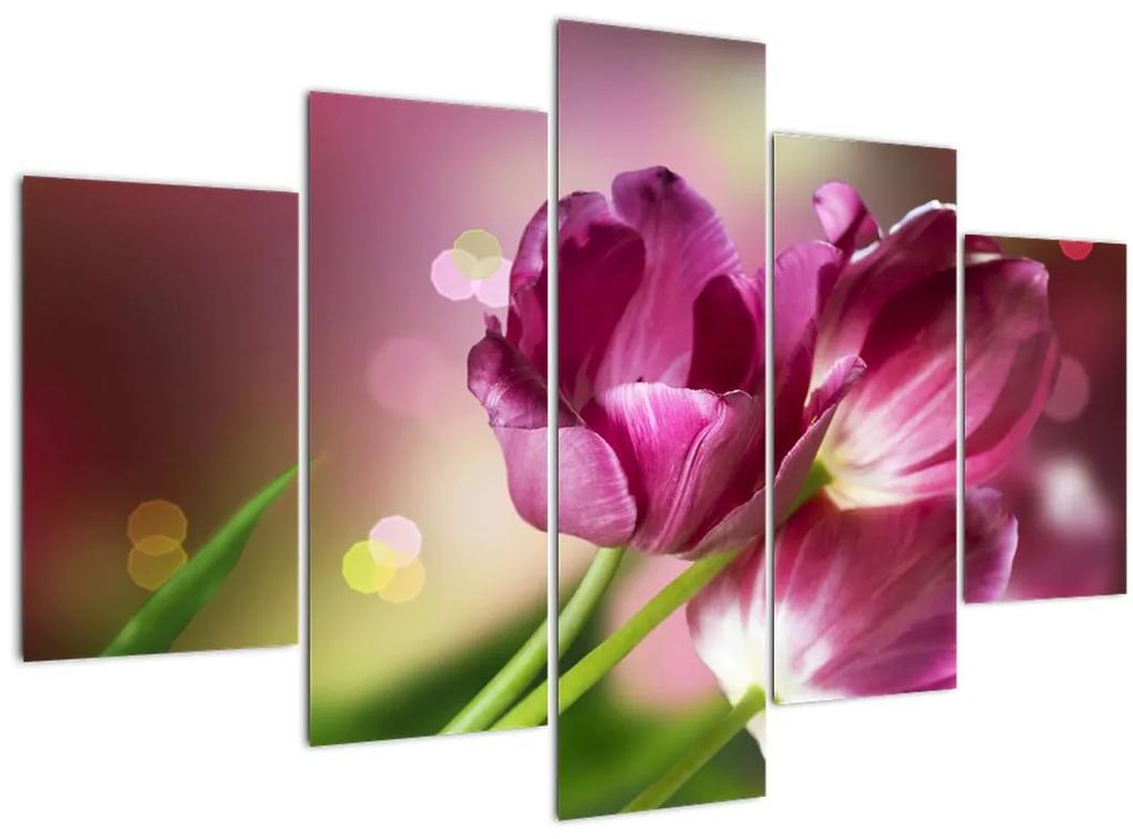 Rózsaszín tulipánok képe (150x105 cm)