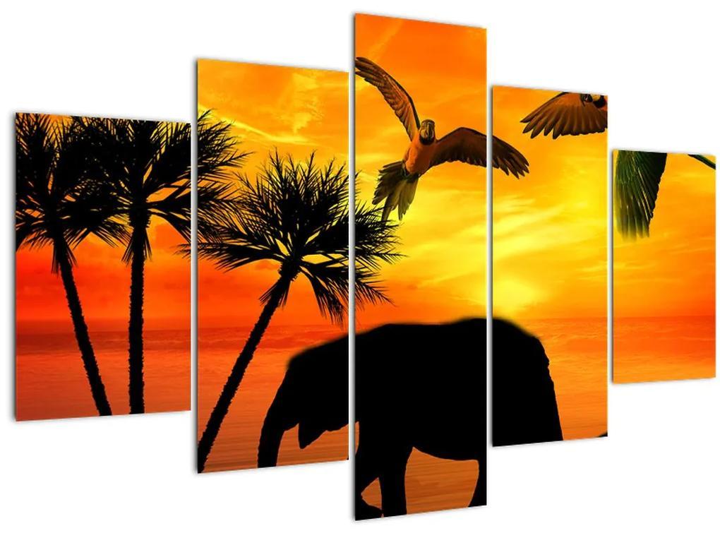 Kép - papagájok és elefántok (150x105 cm)