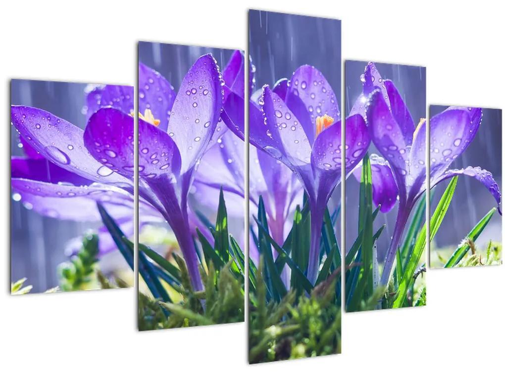 Virágok az esőben képe (150x105 cm)