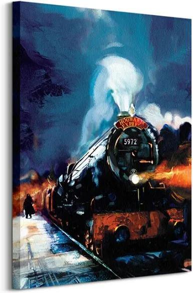 Vászonkép Harry Potter (Hogwarts Express) 60x80cm WDC99433