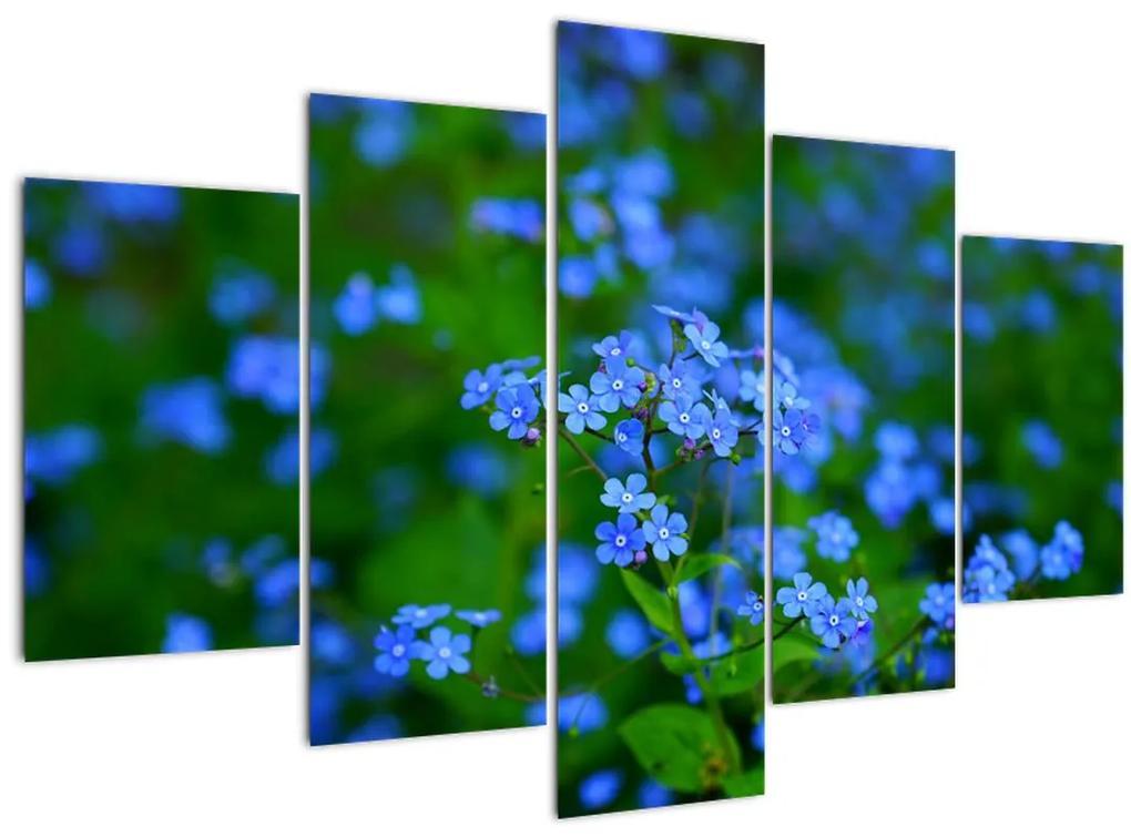 A kék virágok képe (150x105 cm)