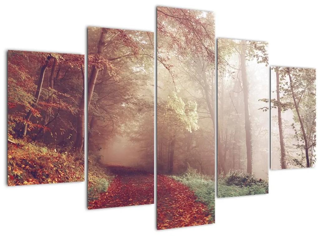 Kép - Őszi séta az erdőben (150x105 cm)
