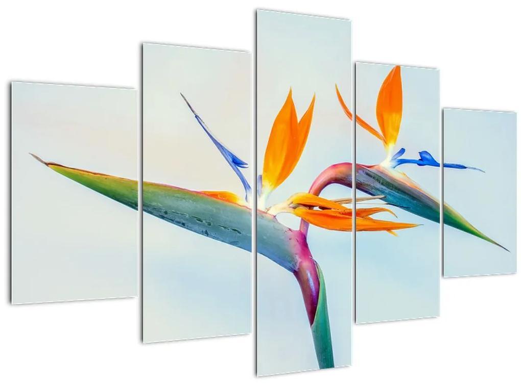Virág képe (150x105 cm)