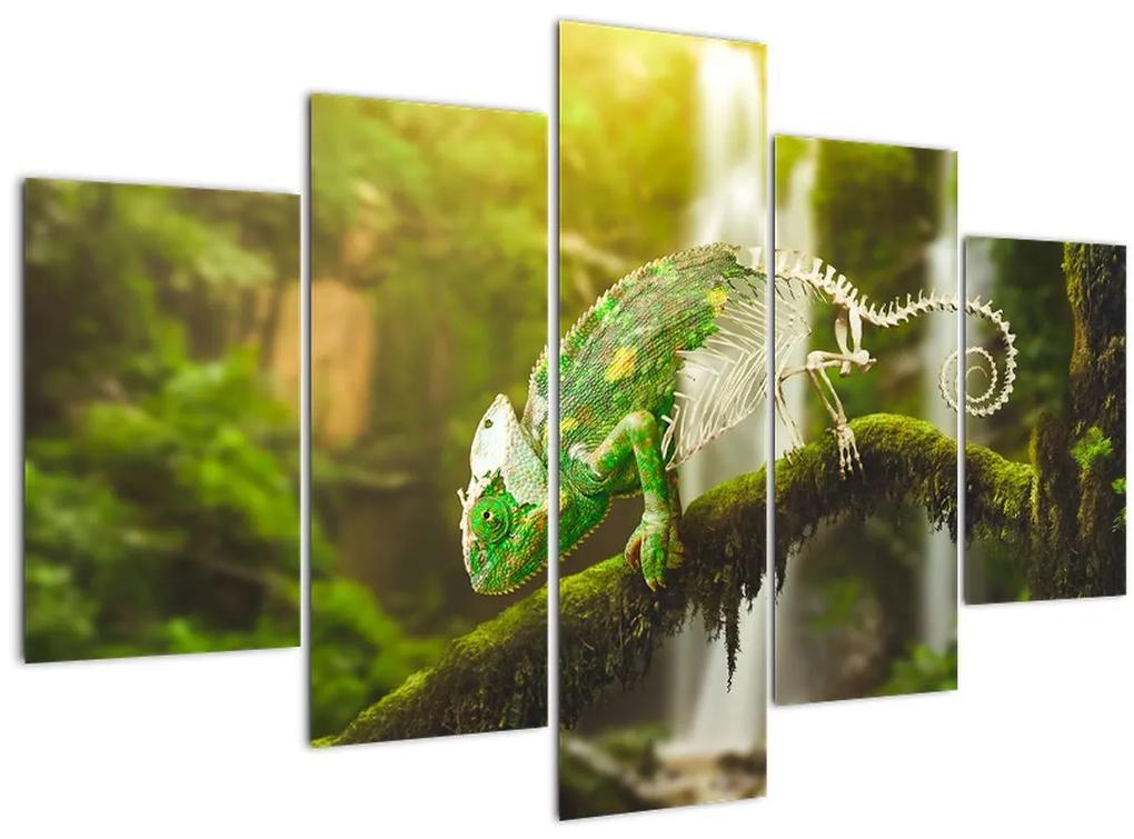 Kaméleon képe (150x105 cm)