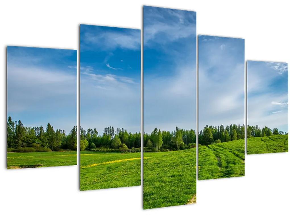 Rét képe (150x105 cm)