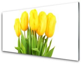 Akril üveg kép Tulipán virágok Plant 140x70 cm