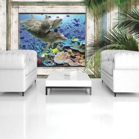 Fotótapéta - Delfinek és halak a tenger alatt (254x184 cm)