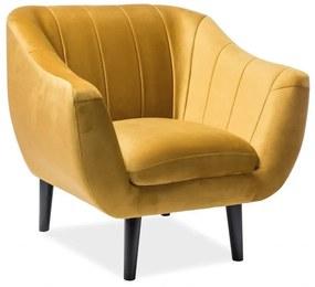 ESTER Velvet 1 fotel, 91x83x85, bluvel 68