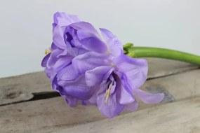 Lila mű hölgyliliom (amarylis) 80cm