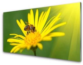 Modern üvegkép Bee Virág Természet 140x70 cm